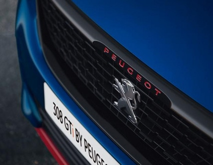 308 GTi by PS Grille