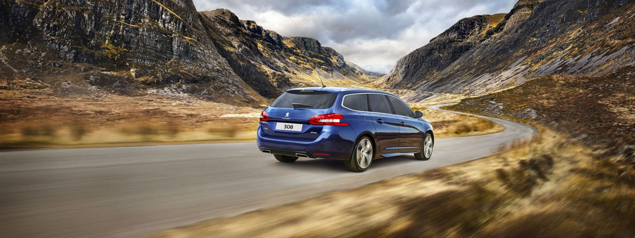 Peugeot 308 telematics back view