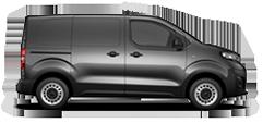Expert Panel Van